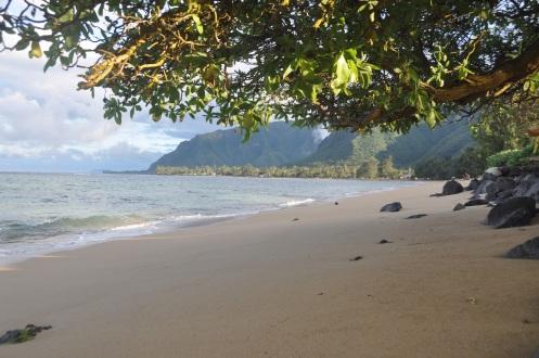 Hawaii (North Coast)